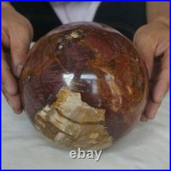 12.7LB 6.3 Natural Wooden Fossil Silicified Quartz Crystal Sphere Ball Healing