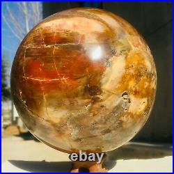 4399g Large Natural Petrified Wood Fossil Crystal Geode Sphere Ball Healing