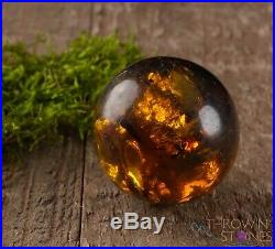 AMBER Sphere XS XL Mexican Amber, Divination Stone Crystal Ball E0356