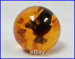 Amber Colored Sphere Ball with Encased Bees